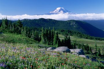 MtRainier JohnMarshall
